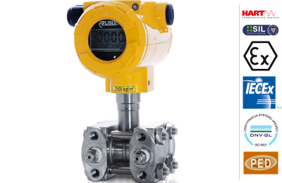 Smart differential pressure transmitters