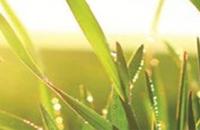 Food & Environmental Applications